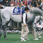 【ウマ娘】血統からは想像も出来ないような走りを見せた競走馬たち