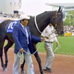 【競馬】1994年の天皇賞(秋)で優勝した名馬ネーハイシーザーが死亡