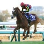 【競馬】池添さんのエピソードを見てると馬からしたら騎手は苦手なものに入るのかな?