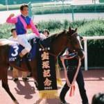 【競馬】引退馬協会メイショウドトウ賞が5月2日船橋競馬場で開催!