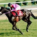 【競馬】24年前の今日、ナリタブライアンが史上5頭目の三冠馬に!