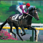 【競馬】JRAのヒーロー列伝ポスターでみんなが一番好きなのってどれ?