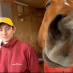 【競走馬】ラッキーライラックが超絶かわいい!もしもウマ娘に登場したら…ゴクリ