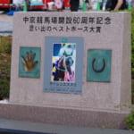 【ウマ娘】中京競馬場には「サイレンススズカ広場」がある!写真や記念碑も