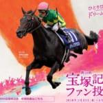 【競馬】宝塚記念・有馬記念はファン人気投票で出走馬が決まる愛された名馬たちの戦い!