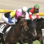 【競馬】ワグネリアンが日本ダービー優勝!福永祐一騎手は19度目挑戦で悲願の初制覇