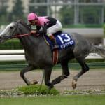 【競馬】競馬関係者が語ったビワハヤヒデの逸話!何故にんにく味噌を食べさせたのだろう?