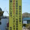 【競馬】牧場見学のマナー&心得まとめ(withシンボリルドルフ会長)