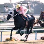 【競馬】ゴールドシチーも活躍した悲劇の1987年クラシック世代