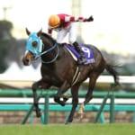 【競馬】オジュウチョウサン有馬記念直行!ジャパンC回避とオーナーが明言