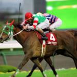 【競馬】競走馬エガオヲミセテの悲劇的な最期と小さなドラマ