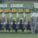 【競馬】宝塚記念でゴルシがやらかした直後のみんなの反応が面白い
