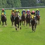 【競馬】3文字の馬名で一番センスが良いと思う競走馬の名前は?
