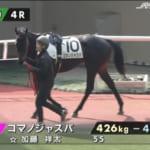 【競馬】放馬し1周2000mのコースを17周したコマノジャスパ