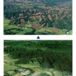 【北海道地震】牧場で暮らす馬たちの安否情報