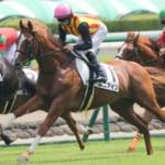 【競馬】ムニアインのメイクデビュー戦は6着!これからの活躍に期待!