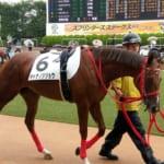 【競馬】オトナノジジョウ(母リャクダツアイ、祖父グラスワンダー)がデビュー戦勝利!
