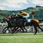 【競馬】中央競馬クラシック三冠を達成した競走馬一覧