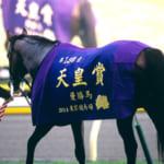 【競馬】天皇賞秋の勝敗予想!どの競走馬が勝つと思う?