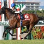 【競馬】神戸新聞杯2018│9月23日開催。ウマ娘モデル競走馬の子孫たちも出走するよ!