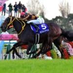 【競馬】エリザベス女王杯11月11日開催。秋の最強牝馬決定戦!