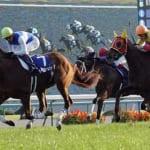 【競馬】エリザベス女王杯、どの馬が勝つと思う?勝敗予想!