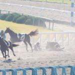 【競馬】京都競馬6Rで3頭落馬…和田騎手、幸騎手、川又騎手が心配