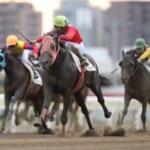 【競馬】的場文男騎手が34年連続年間100勝を達成!