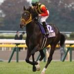 【競馬】最強の2勝馬・サウンズオブアースは新世代のシルバーコレクター!
