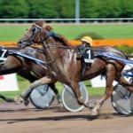 【競馬】トロットレース(繋駕速歩競走)は走ったら失格!まさに馬の競歩