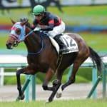 【競馬】マイルCSジュールポレール鞍上が23歳石川裕紀人騎手に決定!