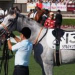 【競馬】みんなが好きな馬名は?