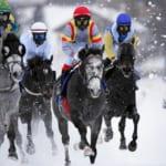【競馬】雪上競馬大会「ホワイトターフ」がすっげぇぞ!