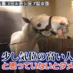 ソノサキでユビキタスと鈴木調教師の感動的な再会が放送。一方我らがゴルシ
