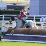 【競馬】タマモプラネットが京都ジャンプS制覇、大逃げで重賞初勝利!