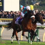 【競馬】歴史的名馬の誕生。アーモンドアイが新しい伝説になった日