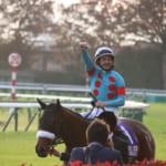 2018年JRA賞全項目発表!年度別代表馬は史上初牝馬での満票でアーモンドアイ