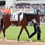 メロディーレーン次走に関する注目発言「有馬記念という選択肢はゼロにはしていません」