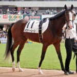 【競馬】馬体重336kg小さなメロディーレーンちゃんが3着に!