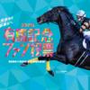 【競馬】11月15日から第63回有馬記念ファン投票が始まるよ!