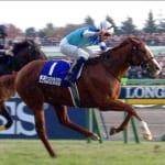 【競馬】ジャパンカップが11月25日開催!国内外の最強馬を決める闘い