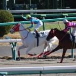 【祝】ルメール騎手がJRA年間213勝で最多記録を達成!