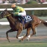 【競馬】マヤノトップガン以外に飛行機関連の名前を持つ馬はいる?