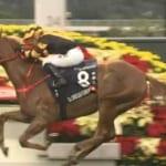 【競馬】香港カップでグロリアスフォーエバーが勝利!ディアドラは追い込んで2着
