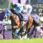 本日開催の重賞レースは天皇賞(春)、平成最後の天皇賞が開催!