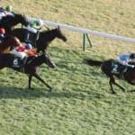 東京新聞杯でインディチャンプが勝利!きさらぎ賞はダノンチェイサーが勝利