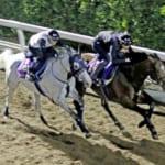 【競馬】ジャスタウェイは名前とゴールドシップの影響で有名なのかと思ったら実績も凄まじいんだ…