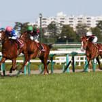 本日開催の重賞レースは阪神大賞典&スプリングステークス!