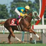【競馬】みんなが一番好きな競走馬の二つ名と言えば?