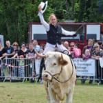 自分を馬だと思ってる牛がカワエエ!食肉牛としての運命を逃れたアストン
